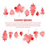 Autumn watercolor red leaves, vector illustration Royalty Free Stock Images