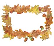 Autumn watercolor yellow frame of oak leaves royalty free stock photography