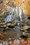 Autumn Waterfall. In Shenandoah National Park royalty free stock photos