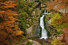 Autumn Waterfall royalty free stock photo
