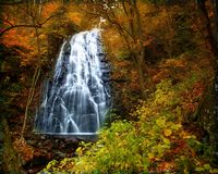 Autumn waterfall. A waterfall in the autumn forest Stock Photography