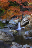 Autumn Waterfall royalty-vrije stock afbeelding