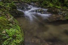 Autumn waterfall.  Stock Photography