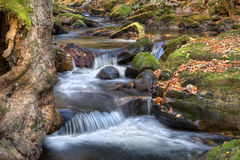 Autumn waterfall. Beautiful waterfall in the forest during fall foliage Stock Photography