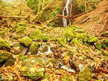 Autumn waterfall in basalt rock. Shinning streams and many colorful leaves on banks. View into autumn waterfall in basalt rock. Shinning streams and many Royalty Free Stock Photography