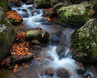 Autumn waterfall. Autumn brook with stones and colored leaves Stock Photography