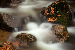 Autumn waterfall. Autumn brook with stones and colored leaves Stock Photos