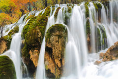 Autumn waterfall closeup Stock Image