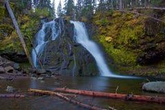 Autumn Waterfall in den Kiefern stockfotografie