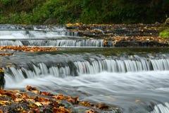 Autumn waterfall in Estonia stock images