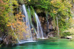 Autumn Waterfall in Forest Stock Photography
