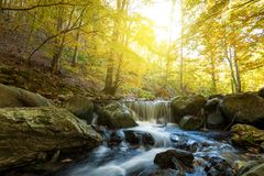 Autumn waterfall in forest Royalty Free Stock Image