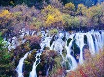 Autumn waterfall in jiuzhaigou