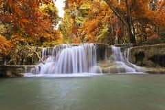 Autumn Waterfall Stock Photos