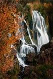 Autumn Waterfall med orange sidor Royaltyfri Foto