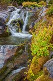Autumn Waterfall, MT Rainier National Park, Washington State royalty-vrije stock afbeeldingen
