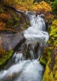 Autumn Waterfall, Mt Rainier National Park, Washington State Photographie stock libre de droits