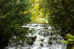 Autumn waterfall in the park, London, UK Stock Photography