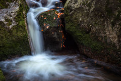 Autumn waterfall. With stones in forest Royalty Free Stock Images