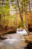 Autumn Waterfall Vertical Royalty Free Stock Photography