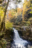 Autumn waterfall Stock Images