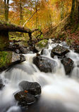 Autumn Waterfalls Royalty Free Stock Images