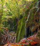 Autumn waterfalls Royalty Free Stock Image