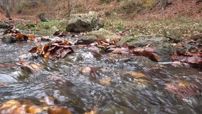 Autumn, waterfalls and streams stock footage