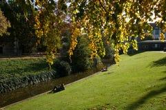 Autumn waterfront Stock Image