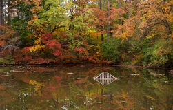 Autumn Waters. Autumn leaves changing color, reflecting in the lake Stock Images