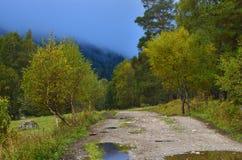 Autumn way. This is sad way in Caucasus mountains in autumn Stock Photo
