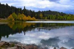 autumn wcześniej Żółci drzewa i nieba wodny odbicie Obrazy Stock
