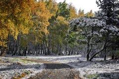 autumn wcześniej Fotografia Royalty Free