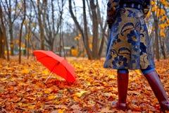 Autumn Wear Royalty Free Stock Photos