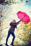 Woman walking in park with umbrella, strong wind Royalty Free Stock Image