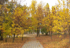 Autumn Weather In Small Russia Town Royalty Free Stock Photography