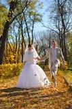 Autumn wedding Stock Image