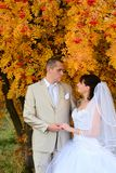 Autumn wedding Stock Photo