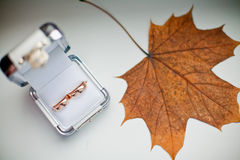 Autumn Wedding Royalty Free Stock Photography
