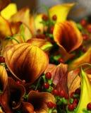 Autumn Wedding Floral Boquet. An autumn style floral arrangement wedding boquet royalty free stock photography