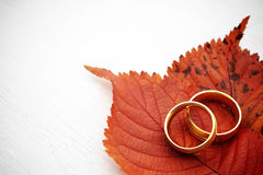 Autumn wedding invite Royalty Free Stock Images