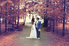 Autumn wedding in park Royalty Free Stock Image