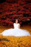Autumn Wedding Portrait Stock Photos