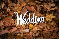 Autumn wedding wooden sign on the leafage.  Stock Images