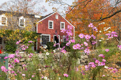 Autumn at Weir Farm. View of Visitor's Center at Weir Farm, a National Historic Site in Wilton, CT. Focus is on cosmos flowers in the foreground Stock Photos