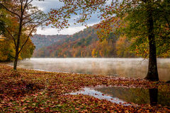 Autumn leaves by a foggy West Virginia River. West Virginia Autumn Steamy River Royalty Free Stock Images