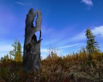 Autumn in Western Siberia. Cold autumn sky in the tundra in Western Siberia Stock Photography