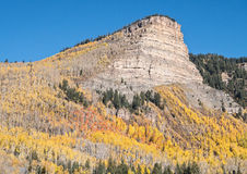 Autumn, Western slope of the Rockies Royalty Free Stock Images