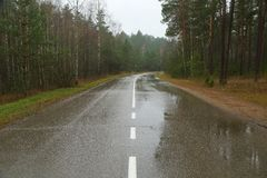 Autumn Wet Road Stock Images