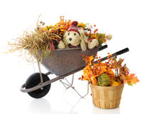 Autumn Wheelbarrow Pup Royalty Free Stock Image